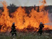 Тушение пожаров на открытой местности